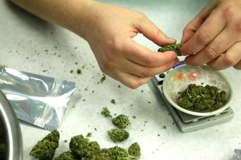 Leagalizing Marijuana