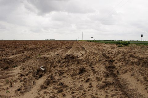Farmers in South Texas are struggling with uneven crops and some that never emerged as the Rio Grande Valley suffers through its driest stretch ever recorded.