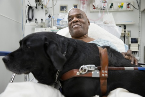 Cecil Williams smiles as he pets his guide dog Orlando in his hospital bed following a fall onto subway tracks from the platform at 145th Street, Tuesday, Dec. 17, 2013, in New York.