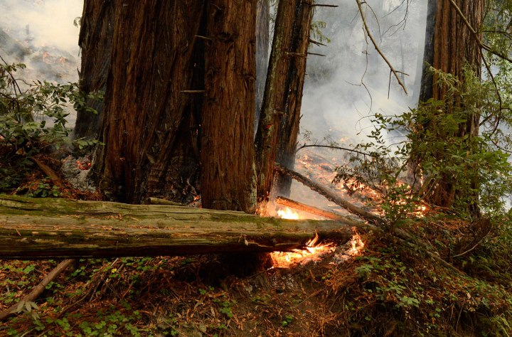 Fire burns near the Big Sur River as firefighters battle a wildland fire in the Pfeiffer Ridge area in Big Sur, Calif., on Dec. 16, 2013.