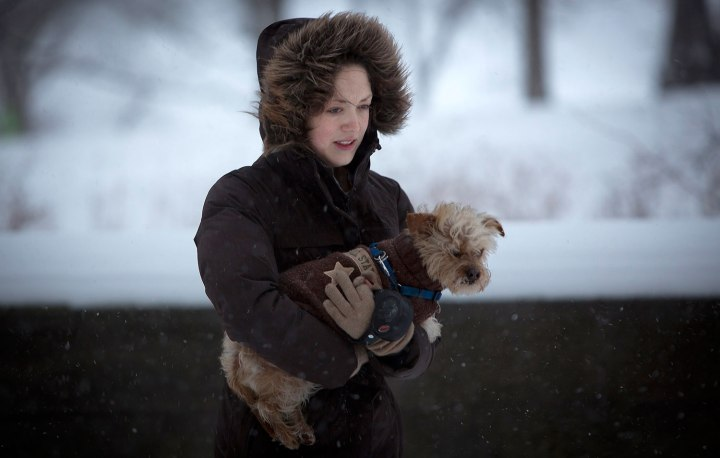 A woman carries her dog across 5th Avenue at Central Park as it snows in New York