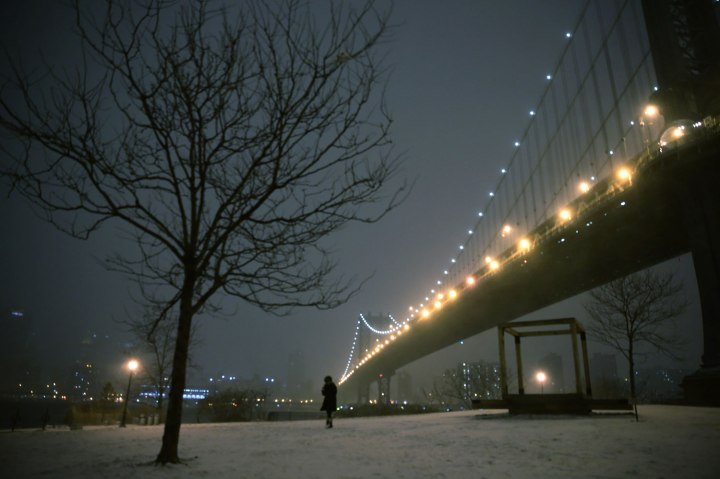 A woman walks through a park on the waterfront in Brooklyn near the Manhattan Bridge during a winter storm in New York, Jan. 2, 2014.