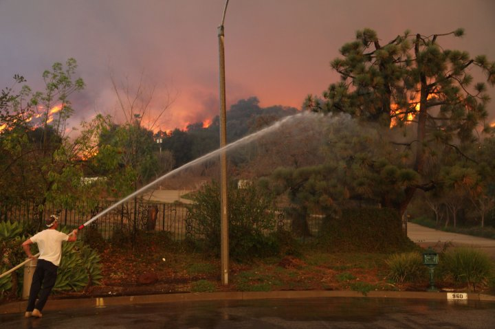 A  homeowner attempts to water down a tree on his property while a wildfire burns in the hills just north of the San Gabriel Valley community of Glendora, Calif., Jan 16, 2014.