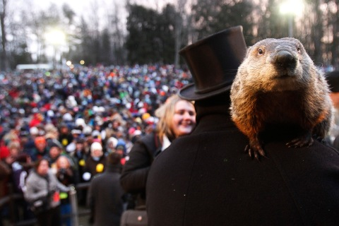 Groundhog co-handler Ron Ploucha holds Punxsutawney Phil in front of a record crowd estimated at 35,000 after Phil's annual weather prediction on Gobbler's Knob in Punxsutawney