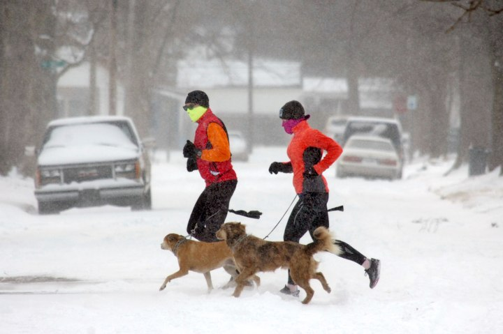 Tim Esh, left, and Katie Karnehm run in the snow with Karnehm's dogs, Bailey, left, and Archimedes in Marion, Ind., Jan. 2, 2014.